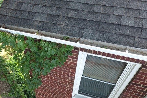 2-story-gutter-inspections